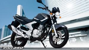Yamaha_ybr250
